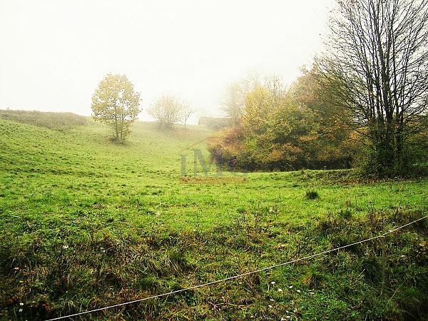 Exkluzívne: Predám pozemok v Horných Hámroch